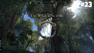 The Elder Scrolls Online - Прохождение #23: Опасное прошлое