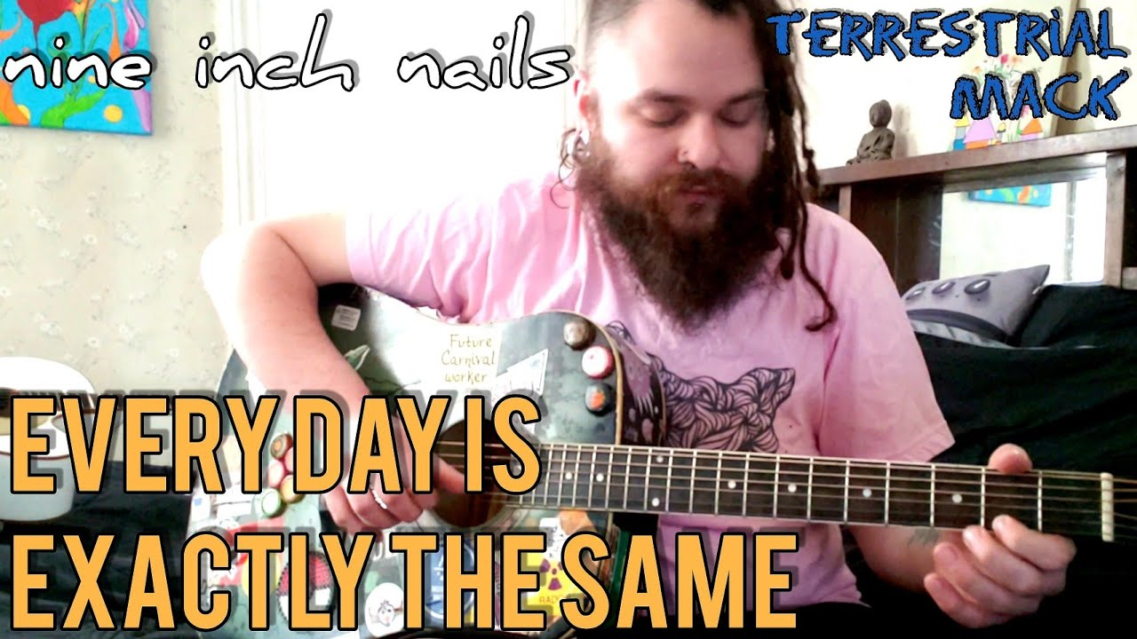 Every Day Is Exactly The Same - nine inch nails \ / acoustic cover