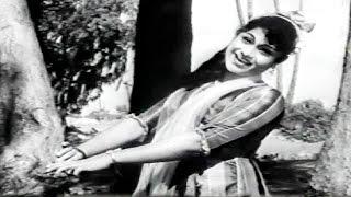 Download Hindi Video Songs - Jeevana Tharanga Kannada Movie Songs || Baara Mandaara || Dr Rajkumar || Leelavathi