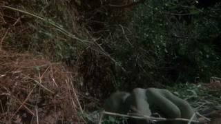 The Snare(Hulkout 1)