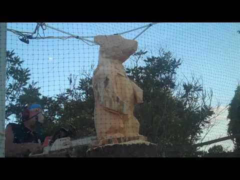 Bear Chainsaw Carving by Scott Kuefler