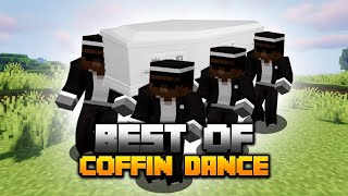 Minecraft: Coffin Dance Meme Compilation BEST OF