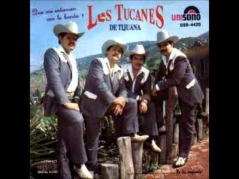 Los Tucanes De Tijuana Ingratos Ojos Mios.wmv