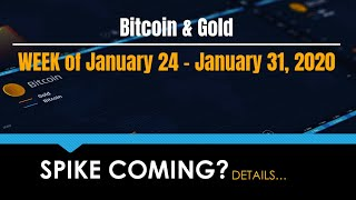Bitcoin & Gold, Week of January 24 - 31 (Bo Polny)
