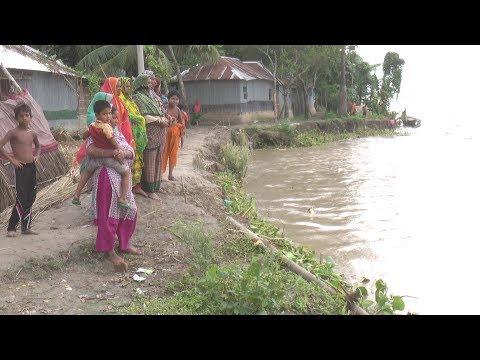 আগ্রাসীরূপে প্রমত্তা পদ্মা!   Padma River   Somoy TV