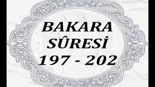 """(2): Bakara Sûresi´nin 197. - 202. ayetleri ( """" TÜRKÇE """" )"""