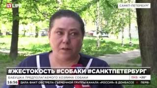 В Санкт-Петербурге собаку выбросили в окно после жестокой расправы