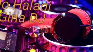 Haladi gina new dj