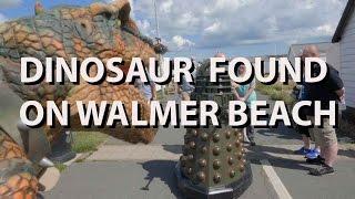 Dinosaur found on Walmer Beach