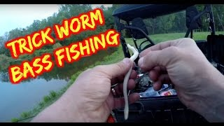 Zoom Trick Worm Bass Fishing