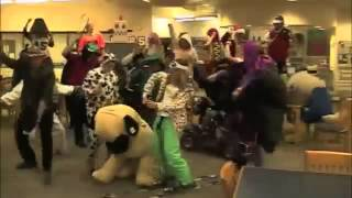 Harlem shake (stephen Decatur)