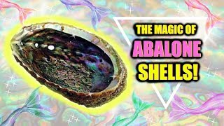 MAGICAL BENEFITS OF ABALONE SHELLS! │ VERY POWERFUL!