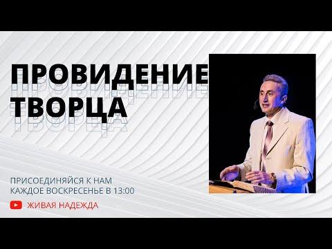 провидение Творца (Николай Литвин)