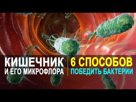 Как восстановить микрофлору кишечника после колоноскопии