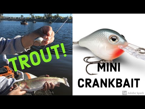 Mini Crankbait For Trout At Santa Ana River Lakes! | Fishing For Stocked Trout