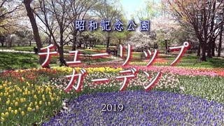 昭和記念公園の渓流広場。春になると色とりどりのチューリップの花が咲...