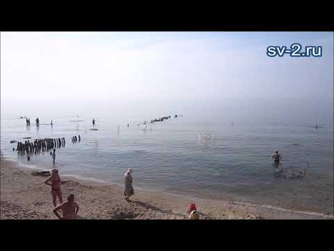 """Пляж в санатории """"Янтарный берег"""", Светлогорск, июнь 2019"""