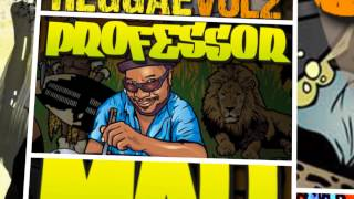 Reggae Samples Loops - Mad Professor Reel To Reel Reggae Vol 2