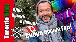 ВЛОГ Рождественский Торонто 🎄 новогодние украшения, витрины, каток, ярмарка 🇨🇦 Жизнь в Канаде