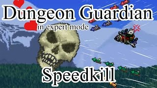 Terraria Expert Dungeon Guardian Speedkill in 9 seconds (8 without lag)