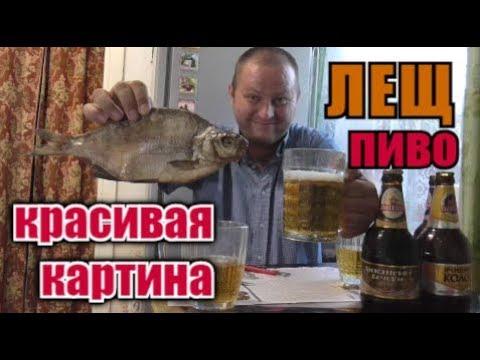 Пью ПИВО ПОЛТАВского РАЗЛИВА с вЯленым ЛЯЩЁМ...