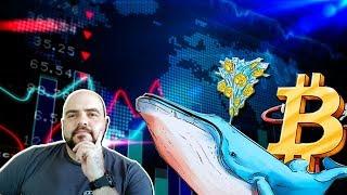 ¿Las Ballenas del Bitcoin Están Comprado? Análisis de Mercado