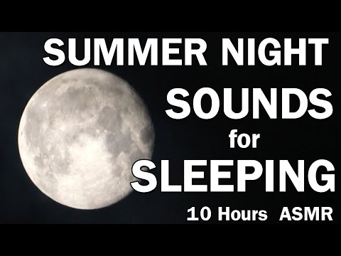 Summer Night Sounds for Sleeping 10 Hours with Crickets