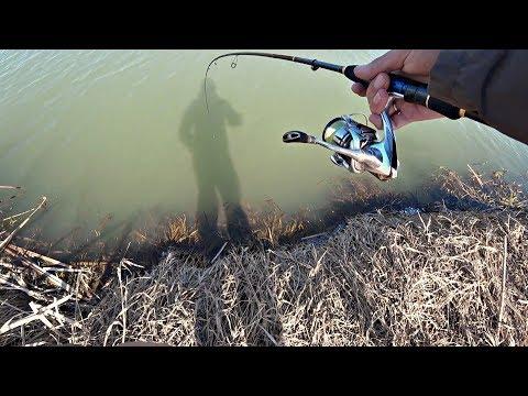 Весенний Жор Щуки! Давно я так не ловил на маленькой речке!