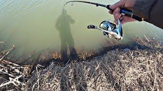 Весенний Жор Щуки Давно я так не ловил на маленькой речке