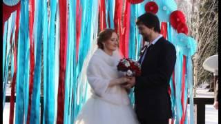 свадебный регистратор, регистрация с юмором, свадьба зимой Анна Носырева 89175392065