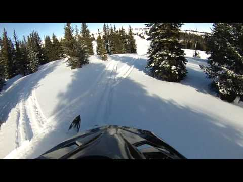 January 2017 Bighorn Mountains Tree Riding