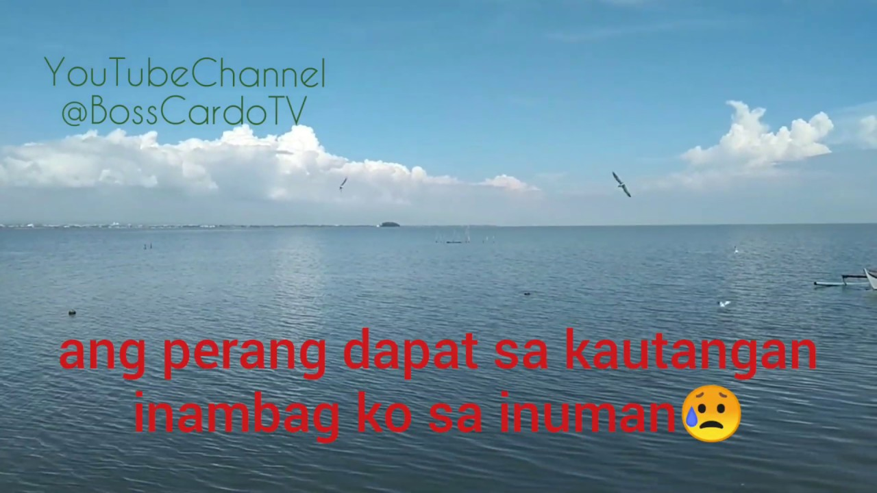 Kabayong Pula Videoke Version (Just another woman in love - Parody)
