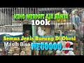 Pasar Burung Terlengkap Murah Pasar Sepanjang Sidoarjo Pusat Kicau Mania Berkumpul  Mp3 - Mp4 Download