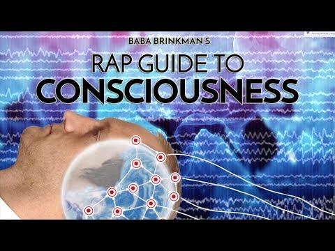 Rap Guide to Consciousness – IndieGogo