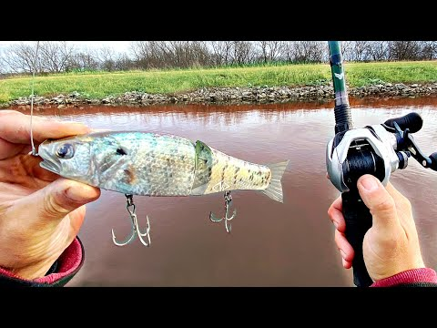 CRAZY Realistic Crappie Baits Get DESTROYED By Giant Fish!! (Best Bait Accessory)
