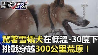 極地冒險!駕著雪橇犬在低溫-30度下 挑戰穿越300公里荒原! 關鍵時刻 20180420-6 馬西屏