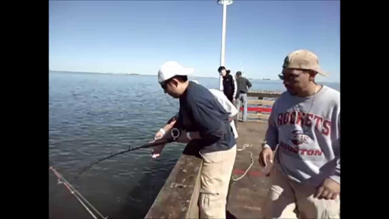 Seawolf park galveston tx wmv youtube for Galveston fishing report seawolf park