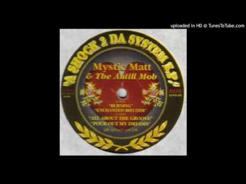 Mystic Matt & Anthill Mob - Enchanted Rhythm