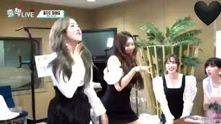 Download Video GFriend SinB, Umji dancing to Bts,exo,Sunmi and so on MP3 3GP MP4