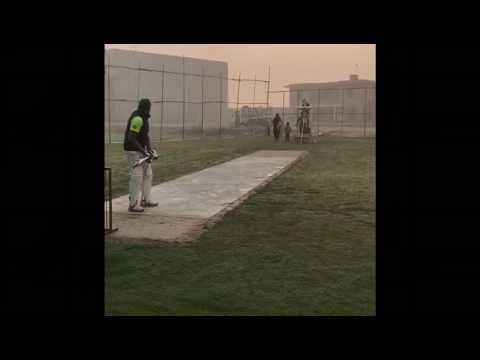 Falik shair cricket in nets