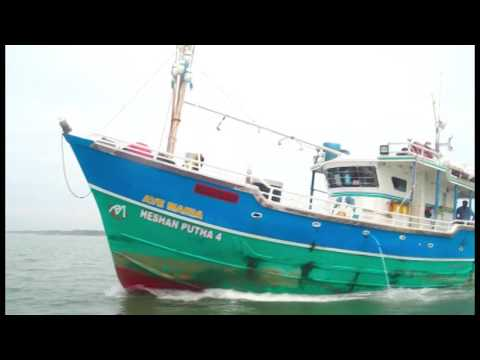 Investment Opportunities In Fisheries And Aquaculture In Sri Lanka