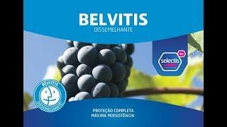 BELVITIS - Dissemelhante!