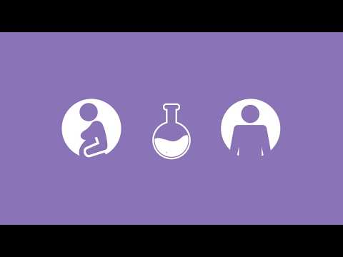 Planning For Pregnancy: Genetic Testing Information