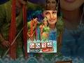 A Aa E Ee Full Length Telugu Movie || Srikanth, Meera Jasmine, Sadha || Shaliimarcinema