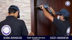 Termites Pest Control Service Lahore Termite Treatment Fumigation Services in Lahore Pakistan