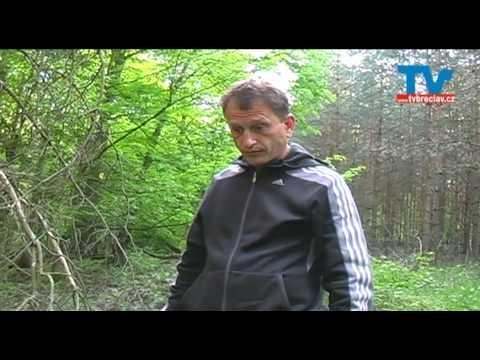 Nebezpečná tajemství Bořího lesa 3 - Břeclav - Poštorná