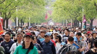 China expected to receive 150 million trips, 8.8 billion yuan during the May Day holiday
