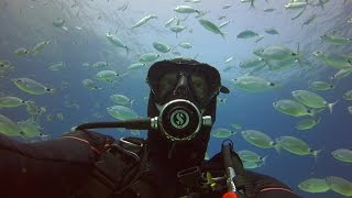Diving Comino Gozo & Malta Tuna Farms 2014 Thumbnail