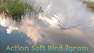 Action soft frog// Soft Bird 7.Gram screenshot 5