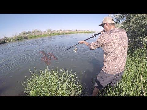 Trampa Y Cerbatana | Caza Y Pesca